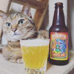 世界ビール旅/SHARKINATOR WHITE IPA#11