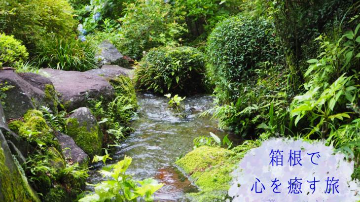 箱根で心を癒す旅〜一日目〜